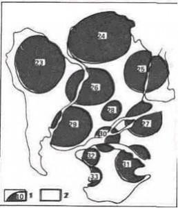 Рис 2-Нуклеары